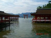 2012natsu10.jpg