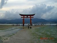 2012natsu23.jpg