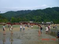 2012natsu24.jpg