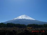 2012narusawa6.jpg