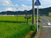 2012natsu67.jpg