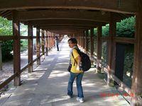 2012natsu73.jpg