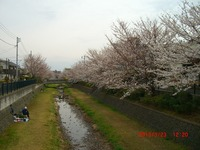 nogawa02.jpg